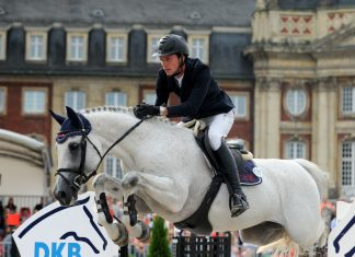 Turnier der Sieger, Westfälischer Reiterverein e.V., Thoms Lehmann